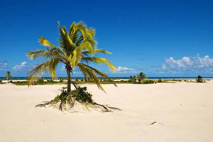 Qual é a melhor época para visitar Mangue Seco?