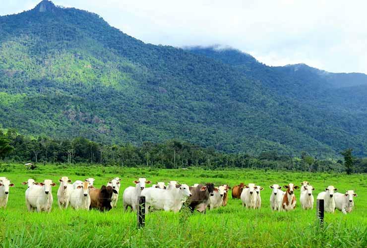 O que é o turismo rural?