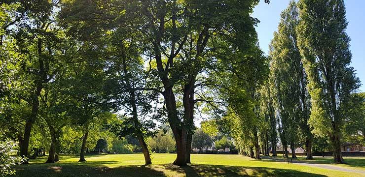 Parque em Timbó SC
