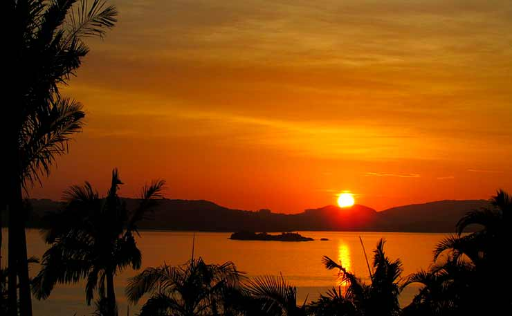 Ilha Guaíba